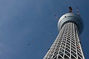 Tokyo sky tree under construction.  When finished this telecommunications towewr will measure 634 metres from top to bottom making it the tallest structure in East Asia. Oshiage, Tokyo, Japan. December 29th 2010