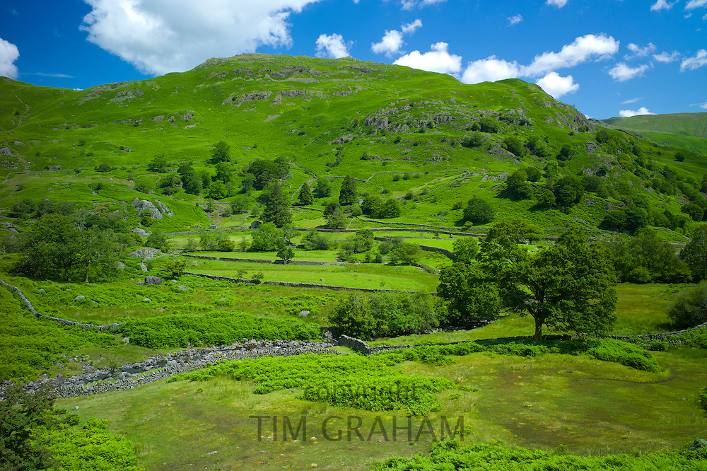 Lakeland countryside at Easedale in the Lake District National Park, Cumbria, UK