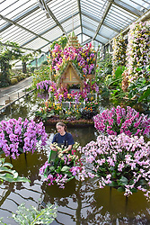 © Licensed to London News Pictures. 08/02/2018. LONDON, UK.  Olivia Steed-Mundin, Diploma Student, puts the finishing touches to the displays in Kew Garden's first Thai-inspired Orchids Festival, which celebration of Thailand's vibrant colours, culture, and magnificent plant life.   The festival runs from Saturday 10 February to Sunday 11 March 2018 and is hosted in partnership with the Royal Thai Embassy, London and Thai Airways.  Photo credit: Stephen Chung/LNP