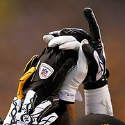 2010 Ravens at Steelers AFC Divisional