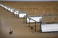 A security guard sits near the gate in front of panels of reflective parabolic trough at Godawari Green Energy Limited Solar-Thermal Power Plant in Nokh, Rajasthan, India on June 10, 2013. 5760 panels concentrate and reflect the heat on to a receiver tube which contains fluid that is heated to create steam to drive turbines. <br /> (Photo by Kuni Takahashi)