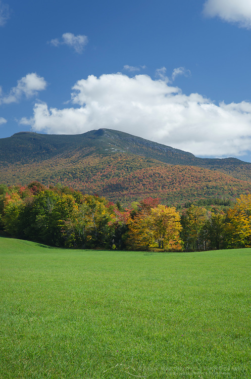 Pasture, Green Mountains, Vermont