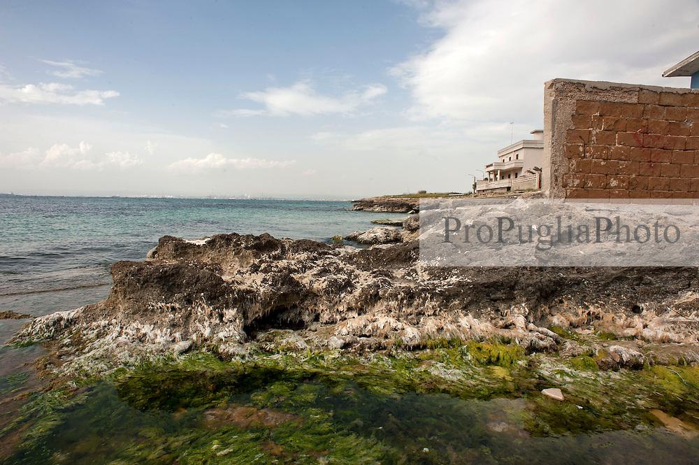 Taranto, maggio 2013.Costa rocciasa a San Vito, Taranto.
