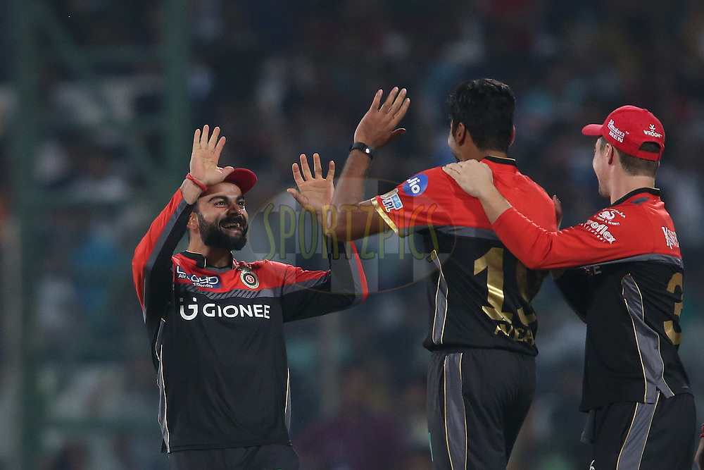 Royal Challengers Bangalore captain Virat Kohli and Avesh Khan of the Royal Challengers Bangalore celebrate getting Sanju Samson of the Delhi Daredevils wicket during match 56 of the Vivo 2017 Indian Premier League between the Delhi Daredevils  and the Royal Challengers Bangalore held at the Feroz Shah Kotla Stadium in Delhi, India on the 14th May 2017<br /> <br /> Photo by Shaun Roy - Sportzpics - IPL