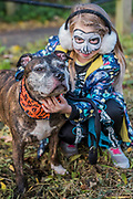 Robin a Staffi, with Sophia - The walk on Hampstead Heath - A charity Halloween Dog Walk and Fancy Dress Show organised by All Dogs Matter at the Spaniards Inn, Hampstead. London 29 Oct 2017.