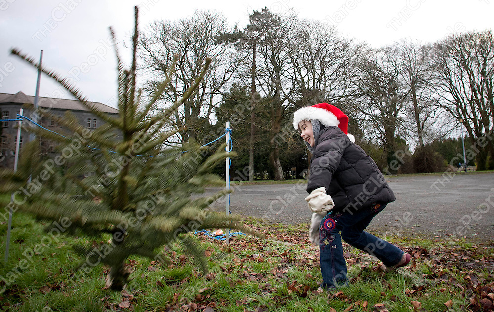 07.01.12<br /> The inaugural Irish Christmas Tree Throwing Championship took place on the grounds of OUr Lady's Hospital Gort Road, Ennis, Co Clare. All proceeds raised will go toward the development of a new Clare County Dog Shelter. Competing in the event was Kitty Cloake.<br /> <br /> Pic. Alan Place / Press 22