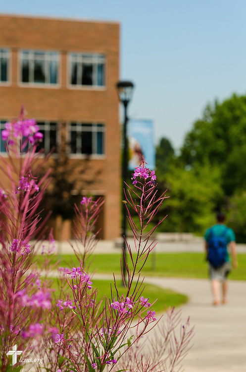 A student walks to class at Concordia University on Friday, July 11, 2014,  in Portland, Ore. LCMS Communications/Erik M. Lunsford