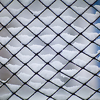 Snow lying perfectly in the wedge of netting.