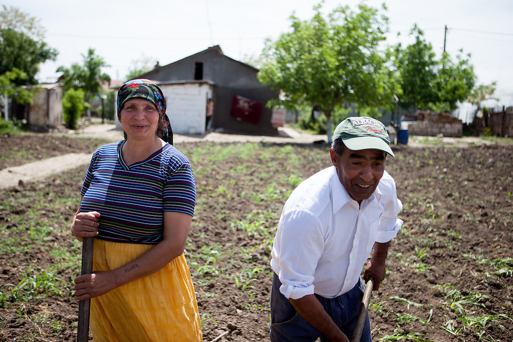 A family working on their field in the Roma area of Frumusani.