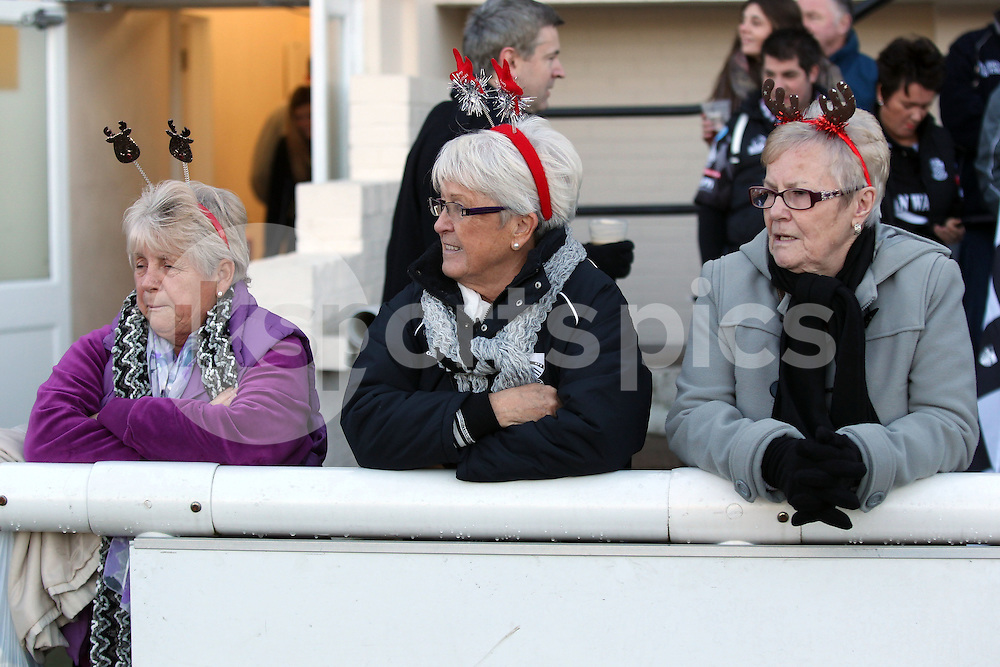 Supporters during the B&amp;I Cup match between London Scottish &amp; Pontypridd at Richmond, Greater London on 13th December 2014<br /> <br /> Photo: Ken Sparks | UK Sports Pics Ltd<br /> London Scottish v Pontypridd, B&amp;I Cup, 13th December 2014<br /> <br /> &copy; UK Sports Pics Ltd. FA Accredited. Football League Licence No:  FL14/15/P5700.Football Conference Licence No: PCONF 051/14 Tel +44(0)7968 045353. email ken@uksportspics.co.uk, 7 Leslie Park Road, East Croydon, Surrey CR0 6TN. Credit UK Sports Pics Ltd