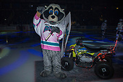 KELOWNA, CANADA - MARCH 10:  Rocky Raccoon at the Kelowna Rockets game on March 10, 2018 at Prospera Place in Kelowna, British Columbia, Canada.  (Photo By Cindy Rogers/Nyasa Photography,  *** Local Caption ***