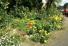 Natuurrijke tuin, Reigerlaan 63, Kortenhoef Netherlands
