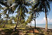 Phu Quoc Island. Bai Thom.