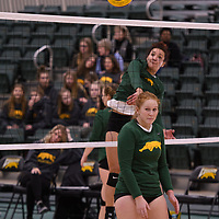 4th year outside hitter Ashlee Sandiford (1) of the Regina Cougars in action during Women's Volleyball home game on January 12 at Centre for Kinesiology, Health and Sport. Credit: /Arthur Images 2018