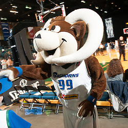 111414 - Reno Bighorns v. Iowa Energy