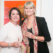 No Repro Fee<br /> 02/04/2015<br /> Picture at the Spinal Injuries Ireland Lunch at the Marker Hotel, Dublin were<br /> Ciara Shaw (left) and Sheena Morley<br /> Pic: Alan Rowlette