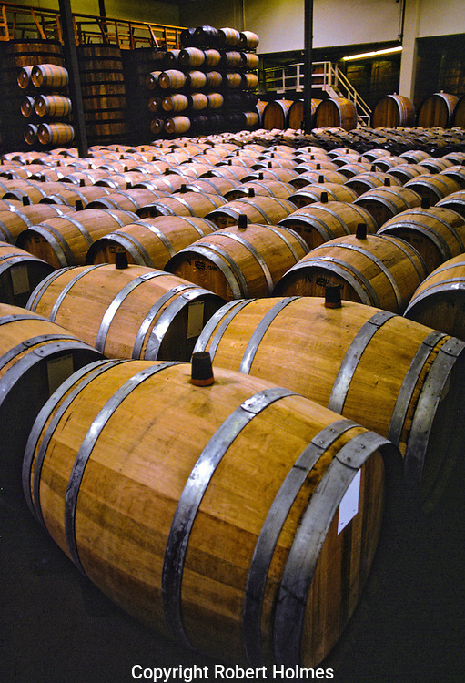 Barrel cellar in Napa Valley