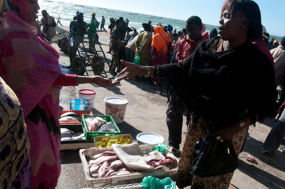 Women buying and selling fish as fishermen off load their catch on the beach in front of the small fishing port in the country's capital..Nouakchott, Mauritania. 13/03/2011..Photo © J.B. Russell