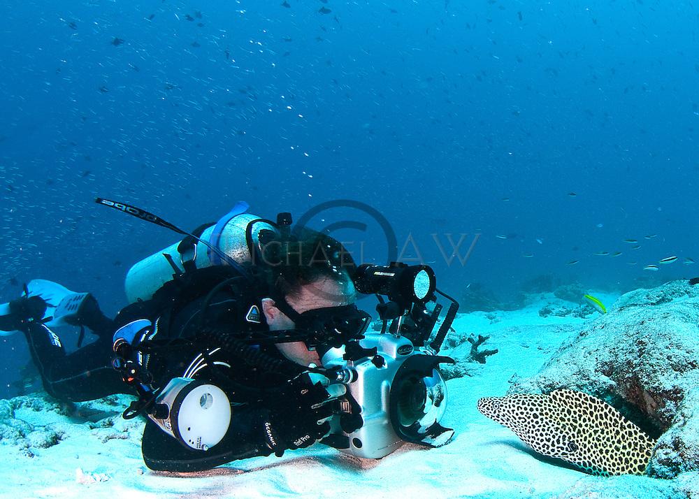 photographer shooting Leopard moray