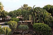 Palm trees garden inside tourist hotel, H10 Ocean Suites, Corralejo, Fuerteventura, Canary Islands, Spain
