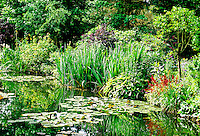 Water garden, House and gardens of Claude Monet, Giverny, near Vernon, France