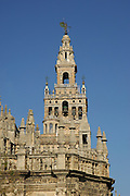 La Giralda,tower of the Sevilla Cathedral (Year 1198) ,Sevilla,Andalucia,Spain,Europe