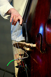 05 May 2013. New Orleans, Louisiana,  USA. .New Orleans Jazz and Heritage Festival. JazzFest..A double bass detail..Photo; Charlie Varley.