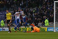 Football - 2016 / 2017 Sky Bet Championship - Brighton & Hove Albion vs. Burton Albion<br /> <br /> Brighton's Sam Baldock celebrates with team mates after putting Brighton into a two goal lead at the Amex Stadium Brighton<br /> <br /> COLORSPORT/SHAUN BOGGUST