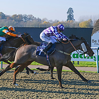 Lingfield 17th November