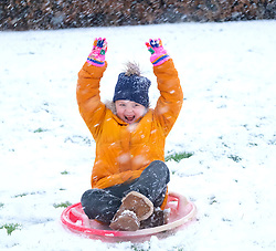 Snow in West Lothian, 10 February 2020<br /> <br /> Following on from the destruction of Storm Ciara, heavy snow started to fall in West Lothian this afternoon<br /> <br /> Pictured: A young girl has fun on her sledge<br /> <br /> Alex Todd | Edinburgh Elite media