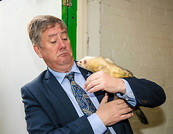Pictured: Keith Brown and Edgar the Ferret<br /> <br /> Cabinet Secretary for Economy, Jobs &amp; Fair Work Keith Brown visited Gorgie City Farm today  to mark their accreditation as the 800th Living Wage employer in Scotland. Mr Brown met Josiah Lockhart, CEO and undertook a short tour of the farm, celebrating their accreditation and promoting the Living Wage more generally. The Scottish Government has set a target of reaching 1,000 Scottish-based Living Wage Accredited Employers by autumn 2017. While at the farm Mr Brown met Maia Gordon, Kirsty McGoff (17) and Zoe White (18), who have benefited from the living wage, and George Ellis, chair of the farm's board of directors<br /> Ger Harley | EEm 18 May 2017