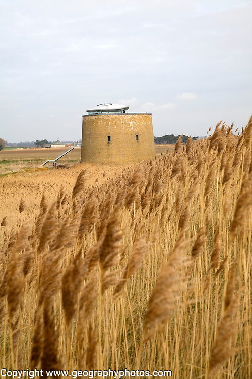 Martello tower in the marshes being converted to a residential property, Bawdsey, Suffolk, England. Martello towers were built along the coast as defences against invasion during the Napoloenic Wars. Between 1804 and 1812 the British authorities built a chain of towers based on the original Mortella tower to defend the south and east coast of England, Ireland, Jersey and Guernsey to guard against possible invasion from France, then under the rule of the Emperor Napoleon. A total of 103 Martello towers were built in England, set at regular intervals along the coast from Seaford, Sussex, to Aldeburgh, Suffolk.