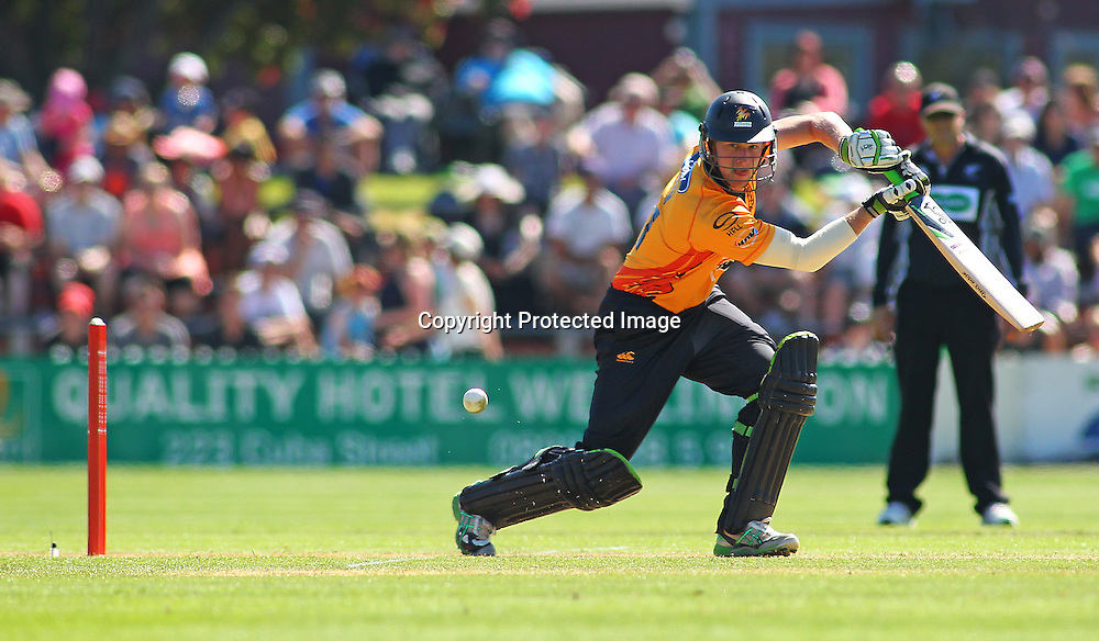 Harry Boam in action during their Twenty20 Cricket match - HRV Cup, Wellington Firebirds v Central Stags, 27 December 2011, Hawkins Basin Reserve, Wellington. . PHOTO: Grant Down / photosport.co.nz