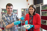 """Micheal Gurry, 3rd year and Roisin Doohan NUIG  at the """"undergrad"""" Science Fair in NUIG .  Photo:Andrew Downes"""