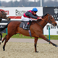 Thomas Brown riding Flavius Victor winning the 3.20 race