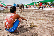Oct. 3, 2009 - CHONBURI, THAILAND: A jockey watches his competition warm up during the first day of races at the Chonburi Buffalo Races Festival, Saturday, Oct. 3. Contestants race water buffalo about 200 meters down a muddy straight away. The buffalo races in Chonburi first took place in 1912 for Thai King Rama VI. Now the races have evolved into a festival that marks the end of Buddhist Lent and is held on the first full moon of the 11th lunar month (either October or November). Thousands of people come to Chonburi, about 90 minutes from Bangkok, for the races and carnival midway. Photo by Jack Kurtz / ZUMA Press