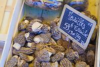 morel mushrooms in the market in Apt, Provence..Photograph by Owen Franken.