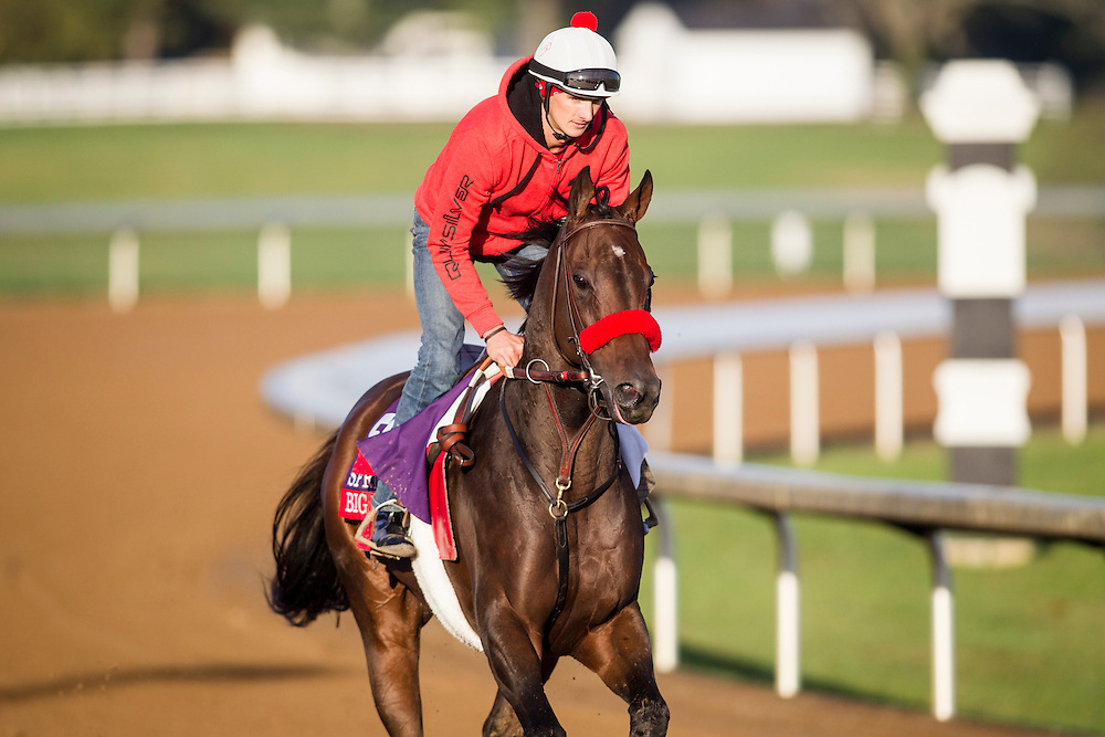 October 29, 2015:    Big Macher, trained by Richard Baltas and owned by Tachycardia Stables (Brendan Bakir) & Tom Mansor, exercises in preparation for the Breeders' Cup Sprint at Keeneland Race Track in Lexington, Kentucky Alex Evers/ESW/CSM