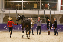 Von Bredow-Werndl Jessica, (GER), Unee BB<br /> Horse Inspection<br /> Reem Acra FEI World Cup Dressage Finals 2016<br /> © Hippo Foto - Dirk Caremans<br /> 24/03/16