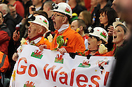 Wales fans show their support.   RBS Six nations championship 2013, Wales v England at the Millennium stadium in Cardiff , South Wales on Saturday 16th March 2013. pic by Andrew Orchard, Andrew Orchard sports photography,