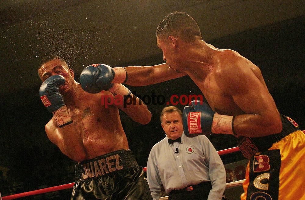 Noche de boxeo profesional en la ciudad de Kissimmee. en la foto los boxeadores Felix Flores (Puerto Rico) y Alejandro Juarez (Mexico). decimo round. Kissimmee, Fl 23 Septiembre 2005, Foto por IPAPHOTO.COM