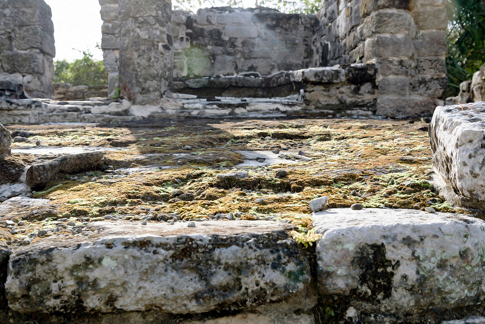 San Gervasio, Cozumel Mexico