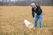 IPM Crop Monitoring Alfalfa
