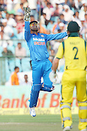 MS Dhoni (capt &amp; wk) of India celebrates the wicket of Phillip Hughes of Australia  (Not pictured) during the 2nd One Day International (ODI) match in the Star Sports Series between India and Australia held at the Sawai Mansingh Stadium in Jaipur on the 16th October 2013<br /> <br /> Photo by Ron Gaunt-BCCI-SPORTZPICS<br /> <br /> Use of this image is subject to the terms and conditions as outlined by the BCCI. These terms can be found by following this link:<br /> <br /> http://sportzpics.photoshelter.com/gallery/BCCI-Image-terms-and-conditions/G00004IIt7eWyCv4/C0000ubZaQCkIRgQ
