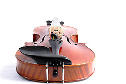30 January 2012:    antique musical instrument, Viola on white background may be with bow