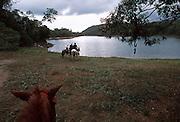 Baru, Volcan 060406 A horseback ride through coffee planation areas in the highlands of Panama near the Baru Volcano.
