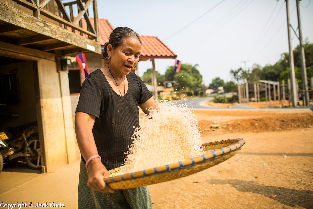 16 MARCH 2013 - PHOU DAM, LAOS:  A woman winnows rice in front of her home in Phou Dam, Laos. The rice is winnowed to separate the kernels from small rocks, bits of chaff or pests that get into it.  PHOTO BY JACK KURTZ