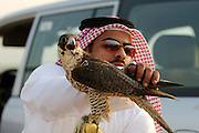 Sheik Saoud and one of his falcons after a successful hunt.