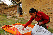 """A YOUNG WOMAN WITH DRY CORN TO PREPARE """"MOTE"""" WHICH IS A TIPICAL FOOD IN THAT PART OF THE HIGHLANDS"""