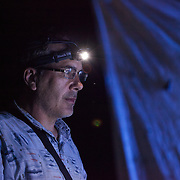 Dr. Steven Lingafelter examines a bed sheet he has set up in the forest next to a blacklight. He is looking for insects that may have been attracted to the light.